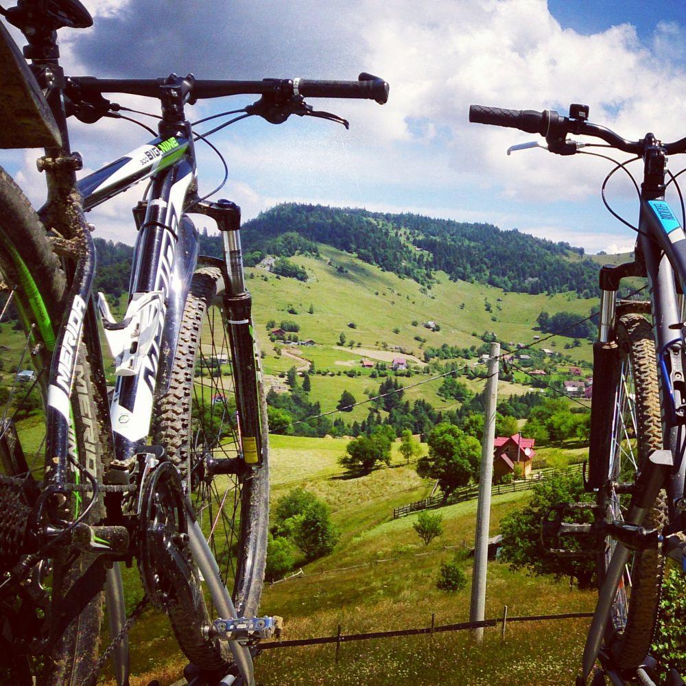 Plimbări pe bicicletă